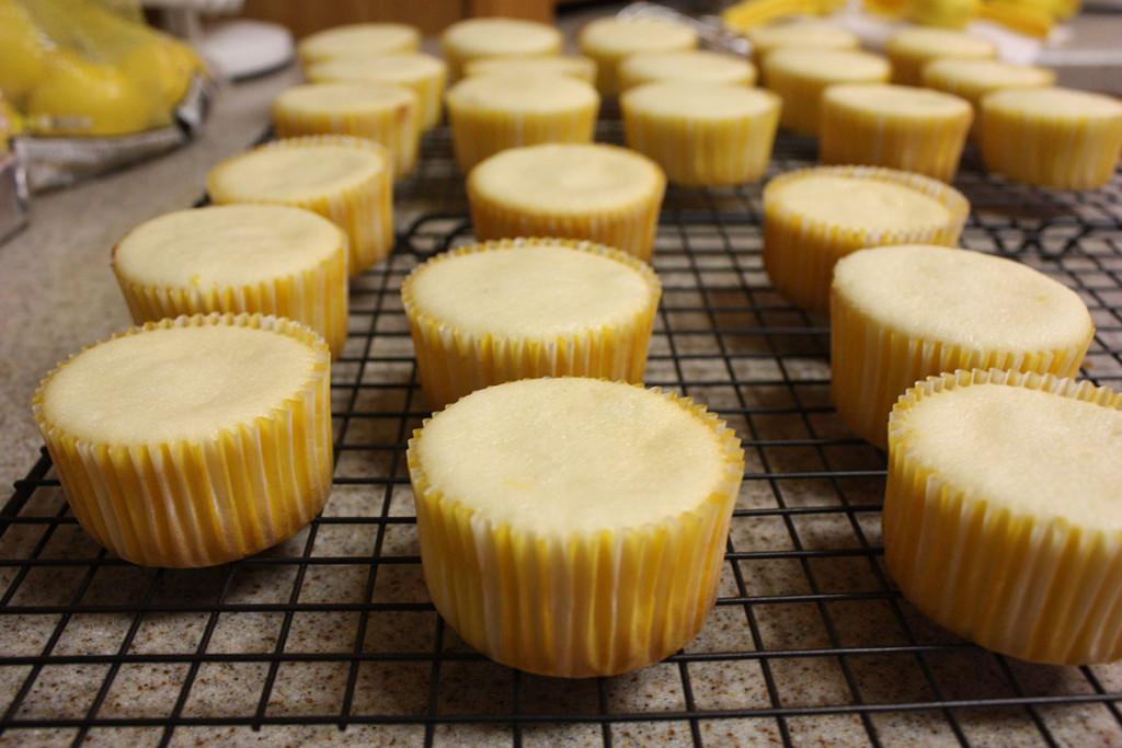 lemoncupcake01