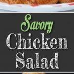 Savory Chicken Salad - No nuts, no fruit! The best tasting chicken salad!