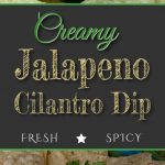 Creamy Jalapeno Cilantro Dip - Be WARNED! This dip is addictive! Fresh, creamy, spicy dip, sauce or dressing. #dip #recipe #appetizer #gameday #party