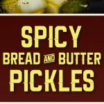 Spicy Bread & Butter Pickles - Spicy, sweet and extra crunchy bread and butter pickles! Almost Wickles.