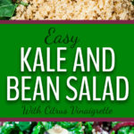 Kale and Bean Salad - An easy nutrient-rich kale and bean salad dressed with a tangy citrus vinaigrette. My version of the Long Life salad. #longlife #kale #salad #beans