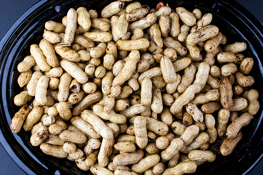 Slow Cooker Boiled Peanuts - raw peanuts in the crock of a slow cooker