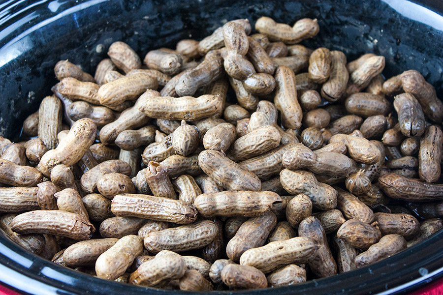 Slow Cooker Boiled Peanuts in the crock of a slow cooker