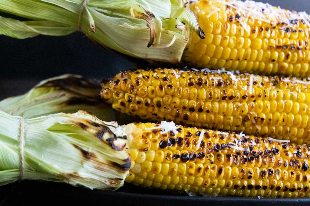 Grilled corn on the cob with the husks pulled back and tied
